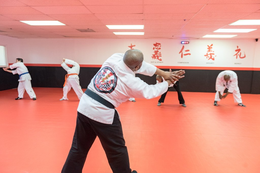 norwood martial arts 2